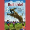 Ball thief